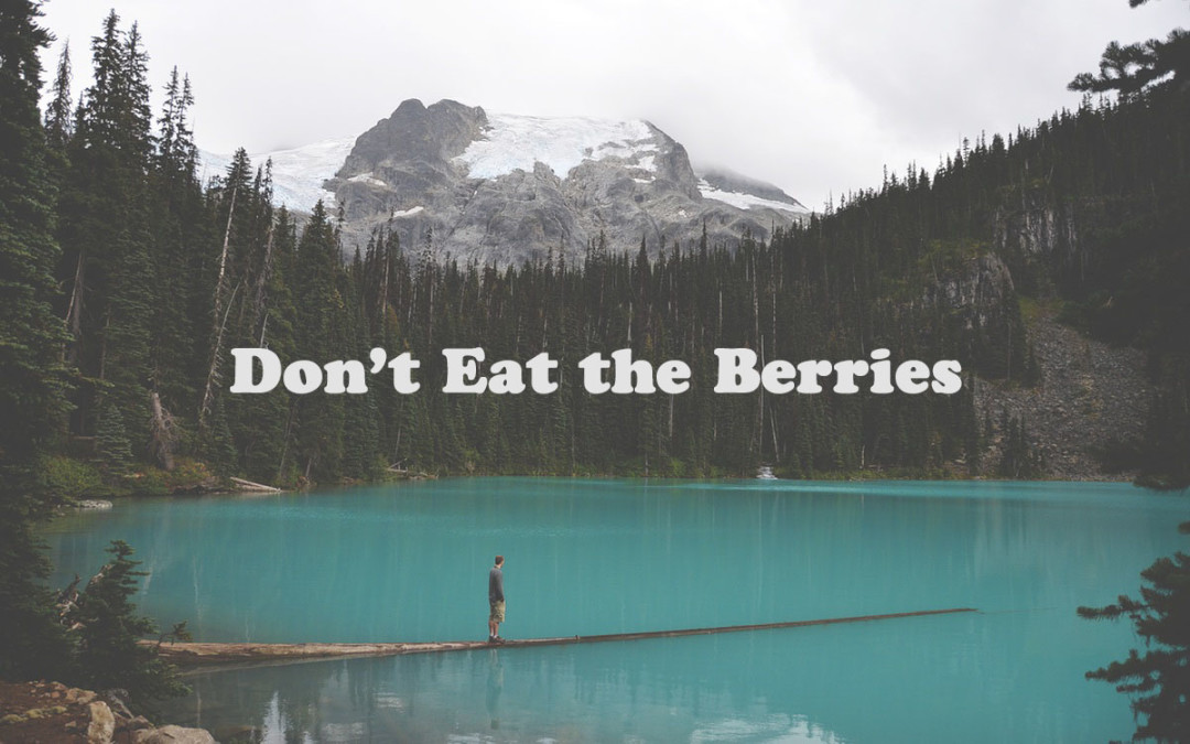 Don't Eat the Berries
